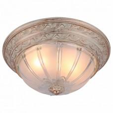 Накладной светильник Arte Lamp Piatti A8014PL-2WA