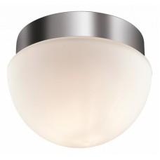 Накладной светильник Odeon Light Minkar 2443/1A