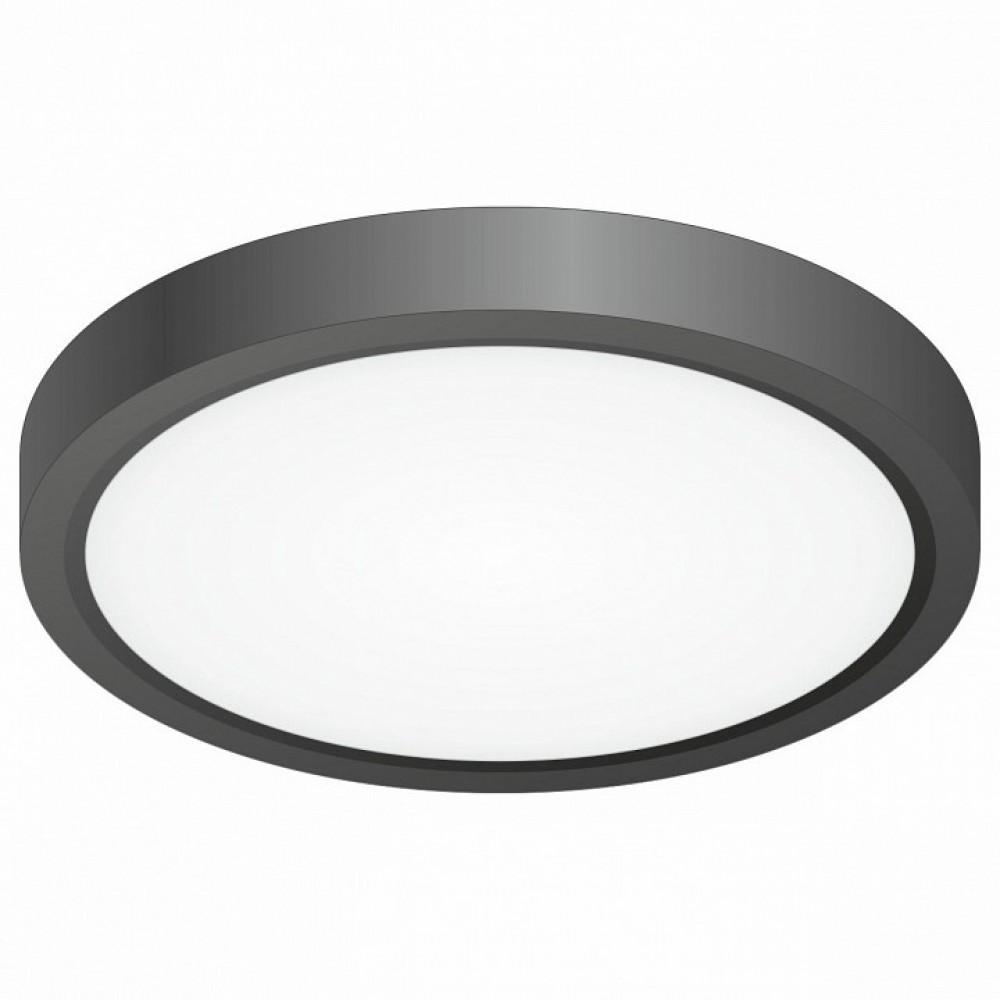 Накладной светильник Citilux Бейсик CL738121N