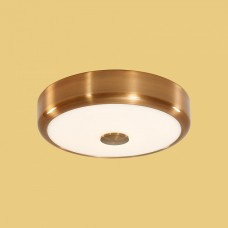 Накладной светильник Citilux Фостер-1 CL706122