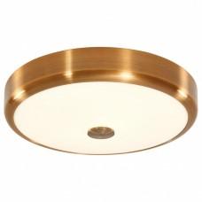 Накладной светильник Citilux Фостер-1 CL706132