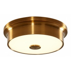 Накладной светильник Citilux Фостер-2 CL706212