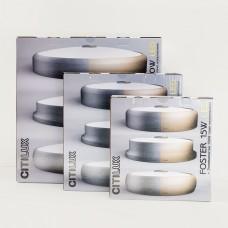 Накладной светильник Citilux Фостер-2 CL706222