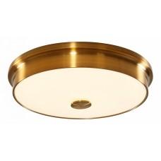 Накладной светильник Citilux Фостер-2 CL706232
