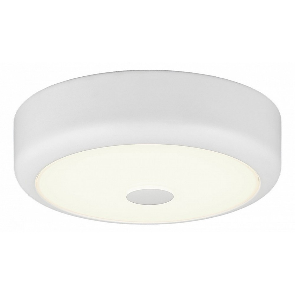 Накладной светильник Citilux Фостер CL706110