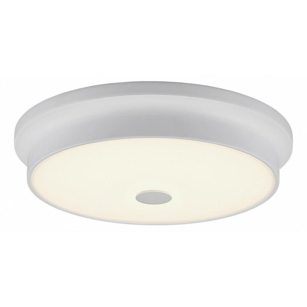 Накладной светильник Citilux Фостер CL706230
