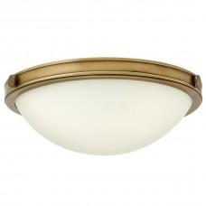 Накладной светильник Hinkley Collier HK/COLLIER/F/S