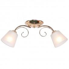 Накладной светильник Imex MD.0361 MD.0361-2-S FGD