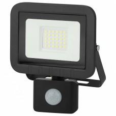 Настенно-потолочный прожектор Эра LPR-041 LPR-041-2-65K-030