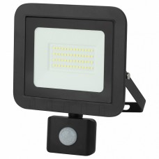 Настенно-потолочный прожектор Эра LPR-041 LPR-041-2-65K-050