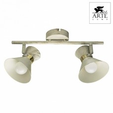 Спот Arte Lamp Baltimore A1406AP-2WG