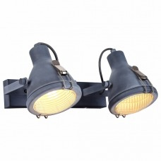Спот Arte Lamp 9178 A9178AP-2GY