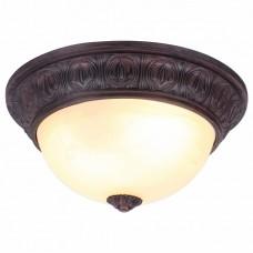 Накладной светильник Arte Lamp Piatti A8007PL-2CK