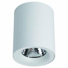 Накладной светильник Arte Lamp Facile A5130PL-1WH