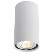 Накладной светильник Arte Lamp 1516 A1516PL-1WH