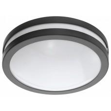 Накладной светильник Eglo Locana-C 97237