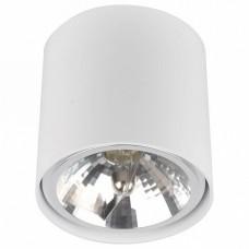 Накладной светильник Zumaline Box 50631