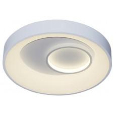 Накладной светильник Escada 10207 10207/2LED
