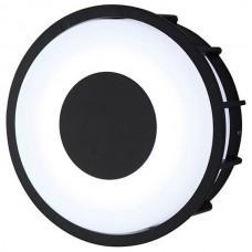 Накладной светильник L'Arte Luce Telma L78056.31
