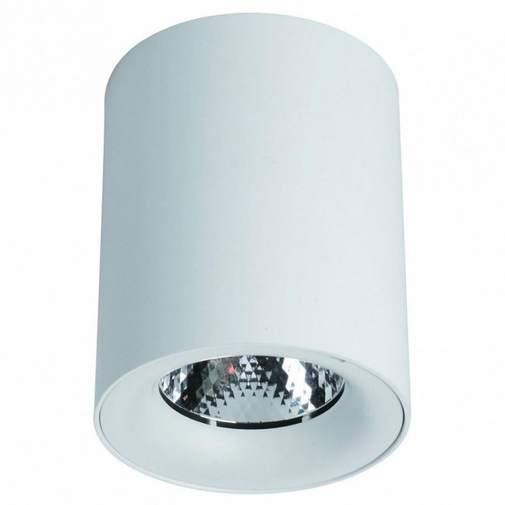 Накладной светильник Arte Lamp Facile A5112PL-1WH