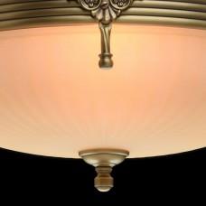Светильник на штанге MW-Light Афродита 1 317011504