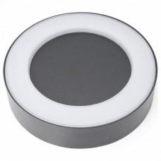 Накладной светильник Favourite Washer 2865-1W