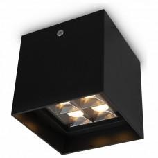 Накладной светильник Maytoni Berg O045CL-L2B3K